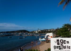 Vegan Guerilla - The Revolution Starts On The Beach! / Buzios
