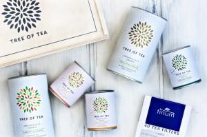 Foto: Tree of Tea