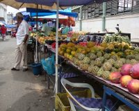 Vegan on the Road: Recife, Brasilien