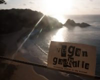 Vegan on the Road: Fernando de Noronha, Brasilien