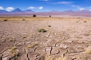 Atacama Wüste, 2014