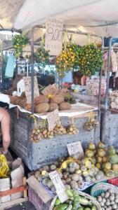 Tropische Köstlichkeiten im Überfluss: hier eine kleine Auswahl der Früchte
