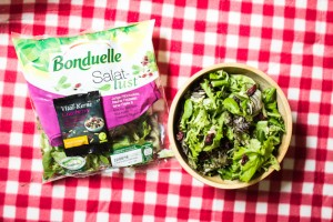 Bonduelle Salatlust